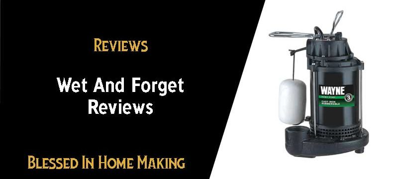 Wet and Forget Reviews – Do it Really Work?